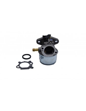 Carburateur BRIGGS & STRATTON 799868